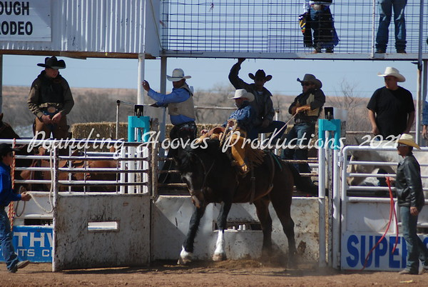 Horses and Broncs 3-4-12