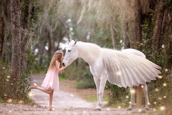 Unicorns Jan 2020 - Shira