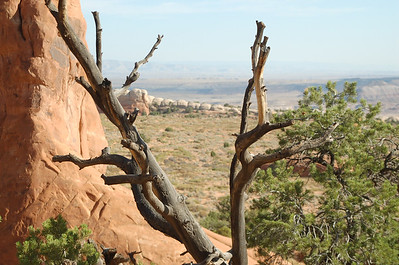 Arches NP 2009