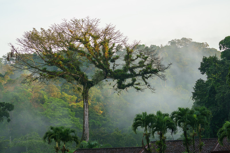 Costa Rica 2015-0882.jpg