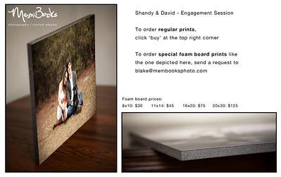 Shandy & David - Engagement Session