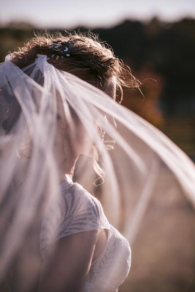 Cox Wedding-337.jpg