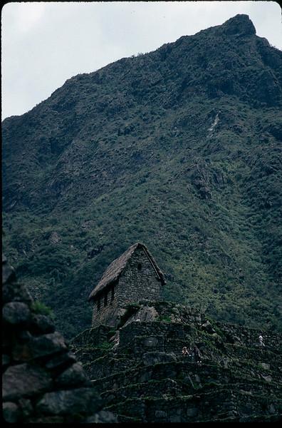Peru1_091.jpg