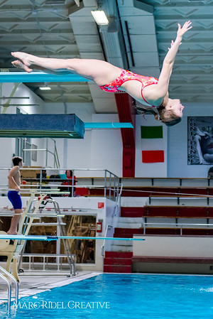 Broughton diving. January 31, 2018.
