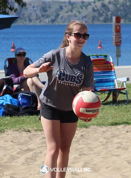 2017 Okanagan Beachfest