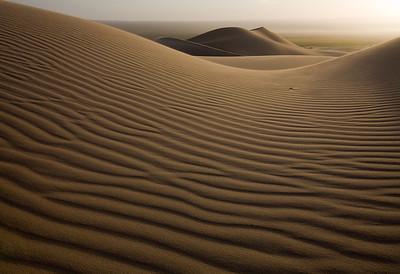 Пустыня Гоби. Фотоколлекция Александра Ведерникова