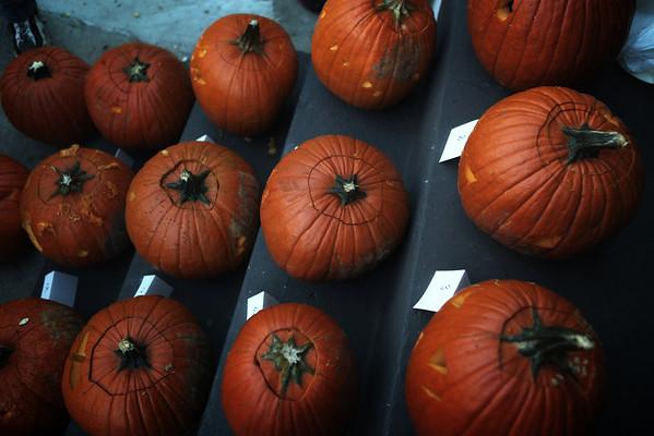 Pumpkin Party 2011