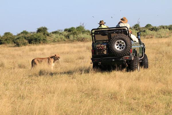 Scenic Okanvango Delta Botswana 2008 2011