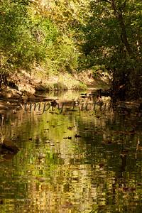 Lanana Creek045
