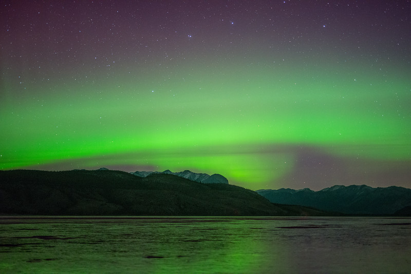 Northern Lights in Jasper