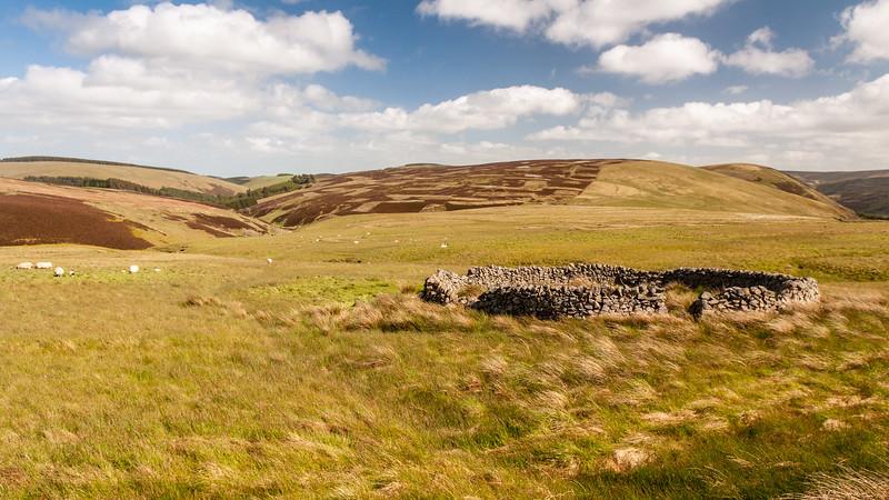 Moorfoot Hills