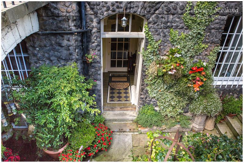 Basement garden, Heriot Row (2)