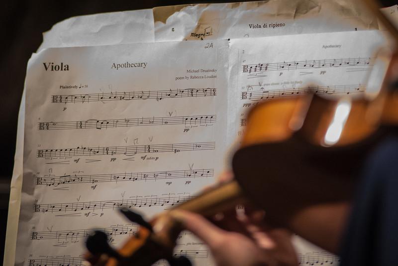 Oistrach Symphony Orchestra (Photo by Johnny Nevin) 141018-1003
