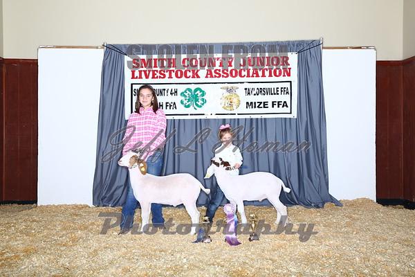 Goat & Lamb Backdrop