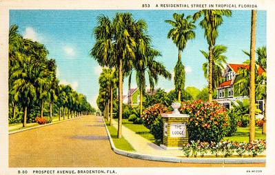 BRADENTON - FL