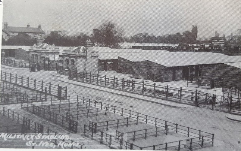 Cattle Market 1914