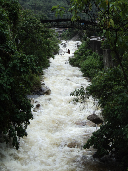 agua-caliente-bridge_5584962950_o.jpg