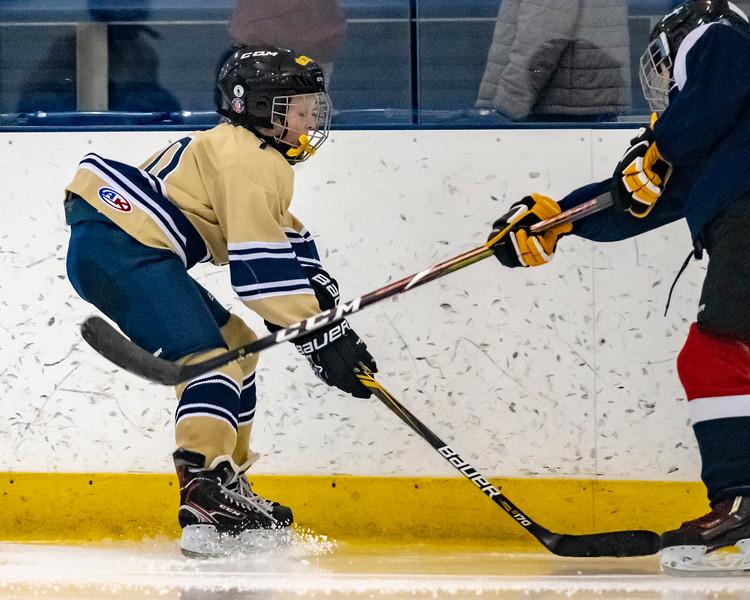 2018-2019_Navy_Ice_Hockey_Squirt_White_Team-23.jpg