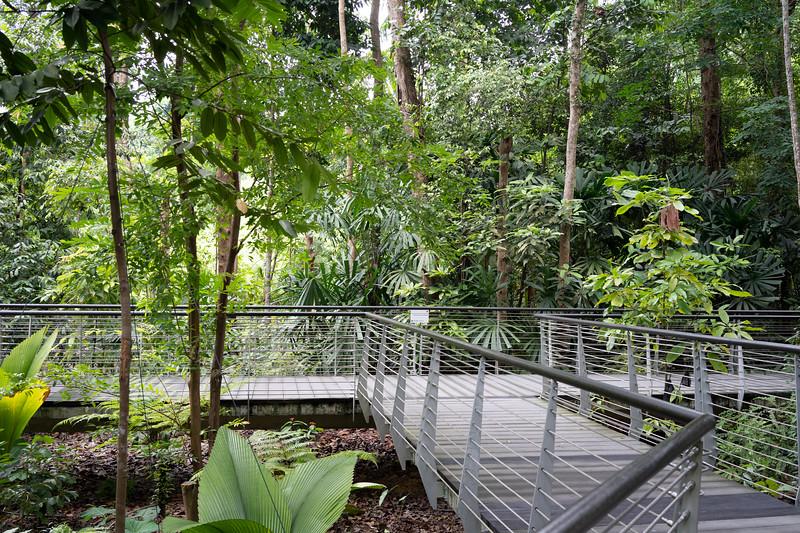 Singapore-19-094.jpg