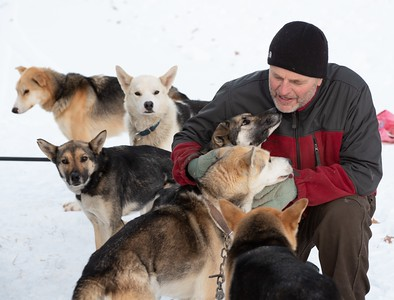Puppy Love at Northern Pines Sled Dog Race 2020