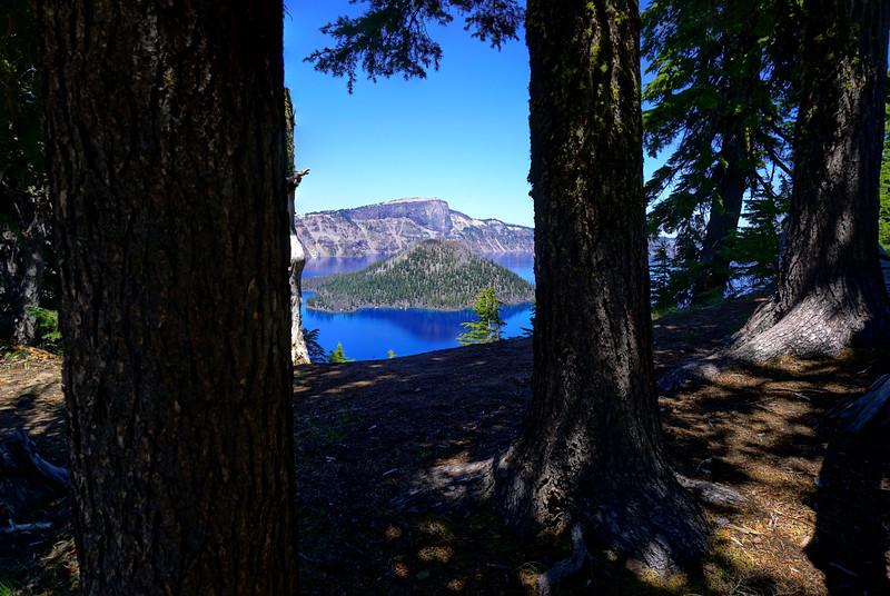 Lake thru trees.jpg