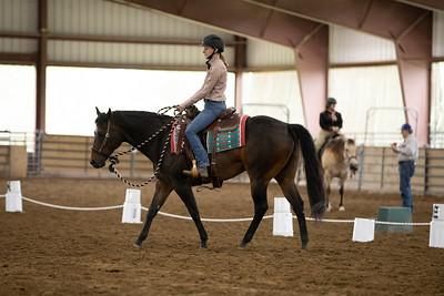Horse 32