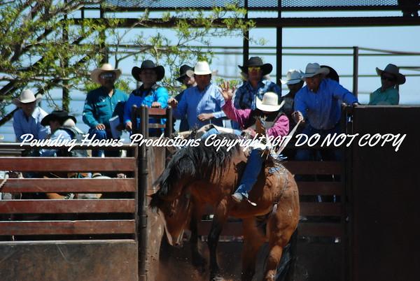 Bareback Horses 4-17-12