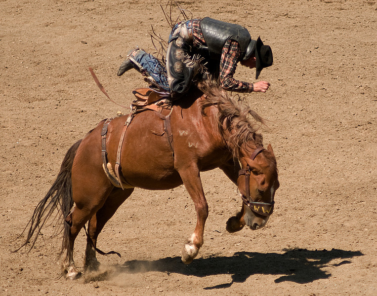 COOMBS RODEO-2009-3685A.jpg