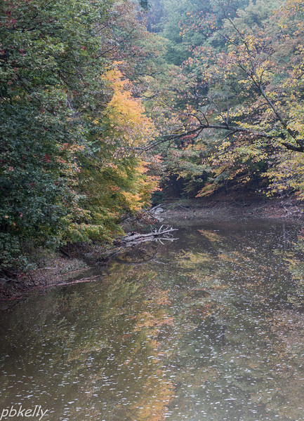 10-15.  Black River from the bridge on my way home.  Fog had lifted to mist.