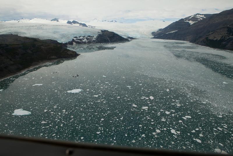 Alaska Icy Bay-3884.jpg