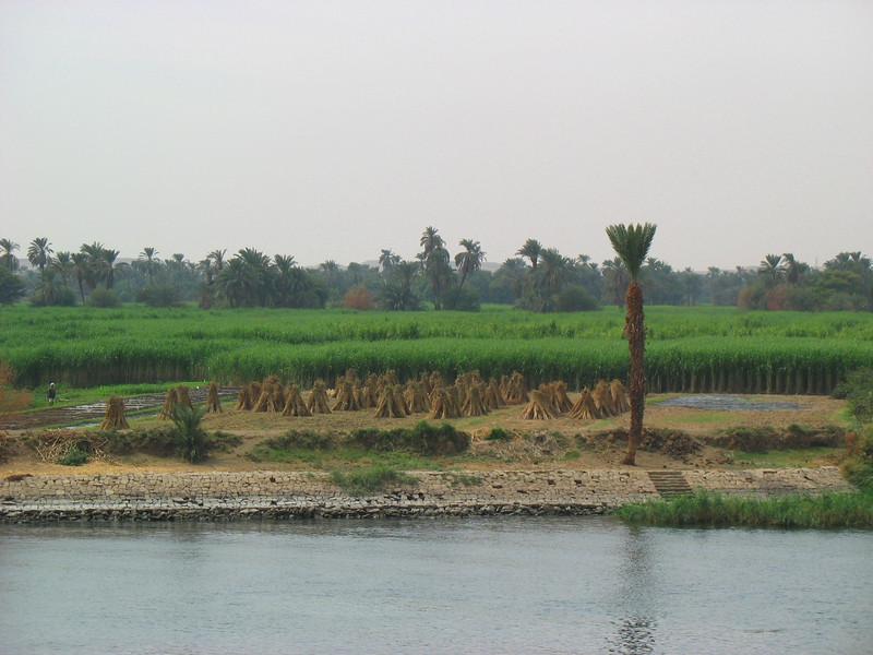 Egypt-403.jpg