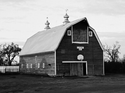 Monke Farms