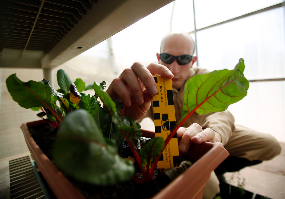 . Hans van Ot Woud, a mapping researcher and the health and safety officer of Crew 125 EuroMoonMars B mission, checks on plants grown at the Mars Desert Research Station (MDRS) outside Hanksville in the Utah desert March 2, 2013.  REUTERS/Jim Urquhart