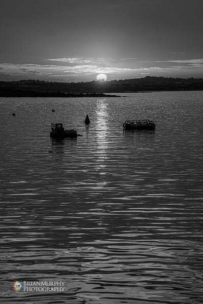 Clogherhead Port Oriel 240819-13.jpg