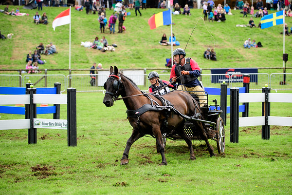 Lowther Horse Driving Trials 2017
