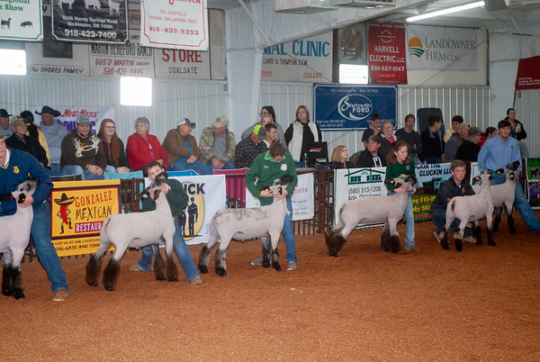 Southeastern Region Sheep Show