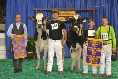 Grand Natl Junior Holstein Show 2016