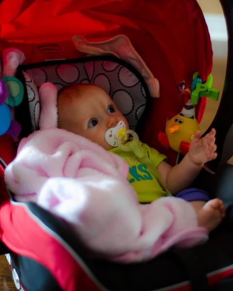 family-portrait-photographer-Hamilton-family-newborn-beyond the lens photography1.jpg