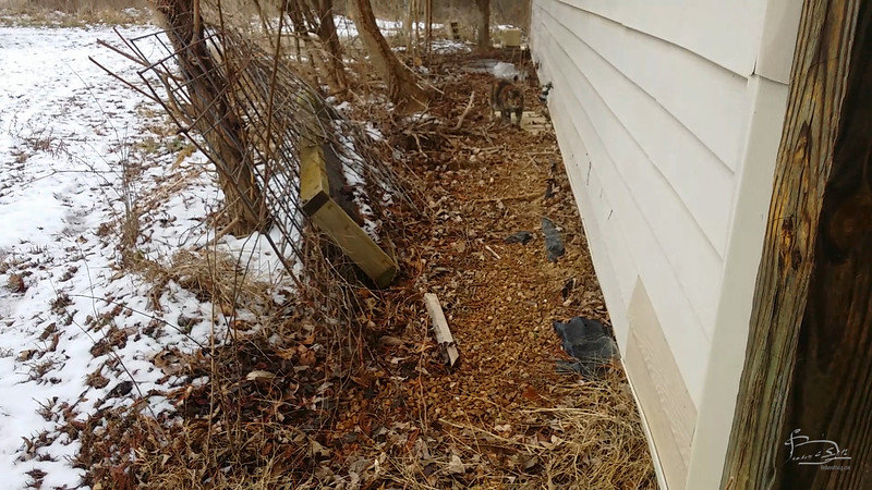 active water running underground on south side of house
