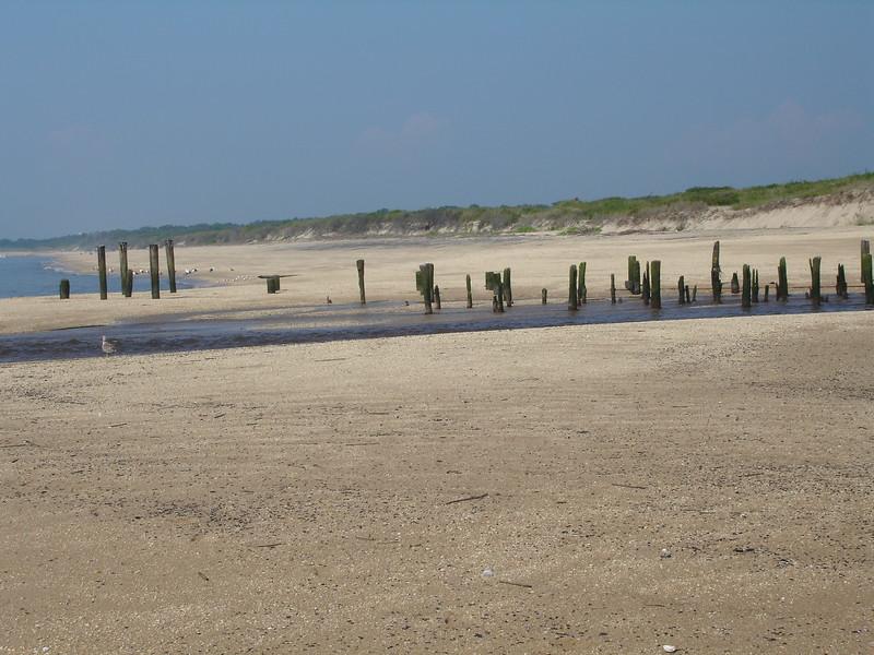 Cape May 1 085.jpg