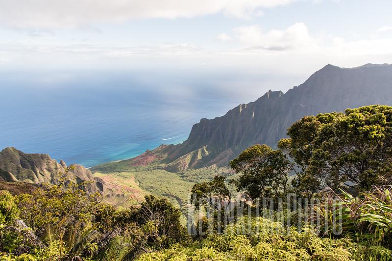 Kauai2017-049.jpg
