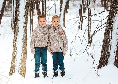 Snow Minis 2020