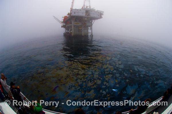 2008 09-27 Coal Oil Pt