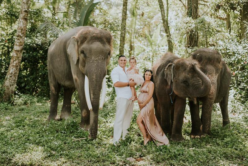 VTV_family_photoshoot_elephants_Bali_ (56).jpg