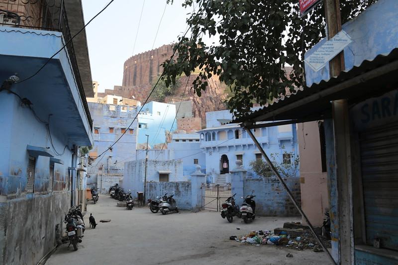 INDIA - 701.jpg
