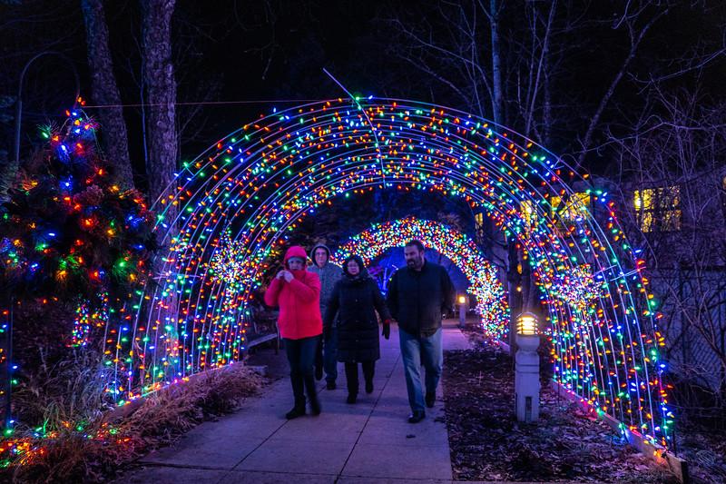 NW Arboretum lights-08173.JPG