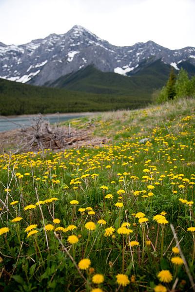 Banff 2012