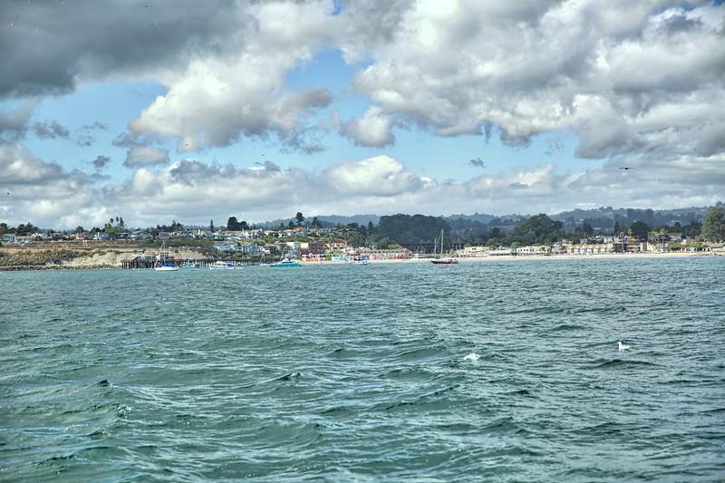 Whale watching off Monterey Coast2017-09-20 (18).jpg