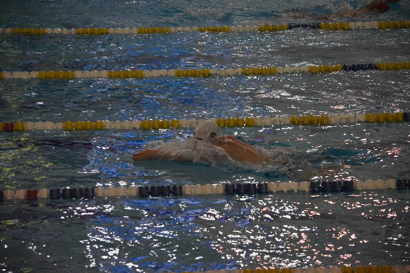 gps swim 1-8-19 (8).JPG