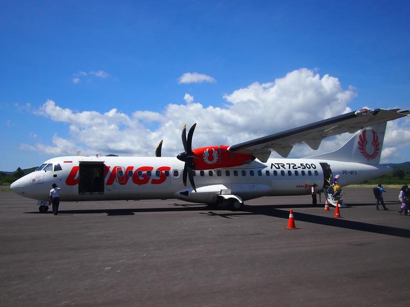 P5148044-wings-air.JPG